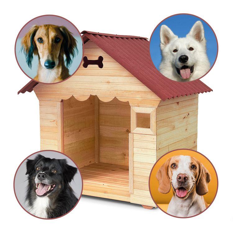casa-perros-madera-labrador-golden-siberiano-o-dalmata-3